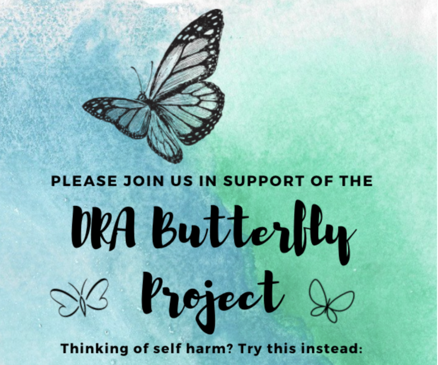 DRA+Butterfly+project